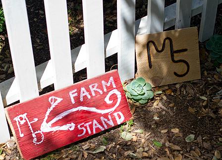 5-marys_farm-stand_sloboda14